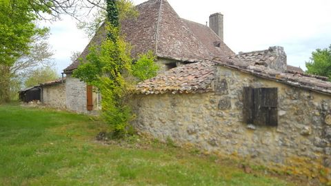 Stone-built farmhouse on 3 hectares of land in a pretty village near the mediaeval town of Beaumont-du-Périgord and the town of Bergerac. The house consists of a ground floor and first floor, for a total of 207 m². Attic of 65 m² with potential for c...