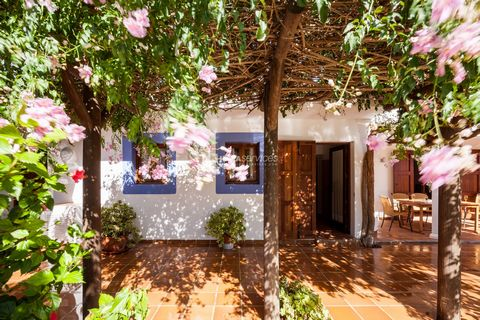 Holiday rental in Ibiza Traditional style house located just five minutes drive from the peaceful village of San Agustin where there are bars, a restaurant and a small shop. Between 1949 – 1972 this house was a country grocery store and then was reno...
