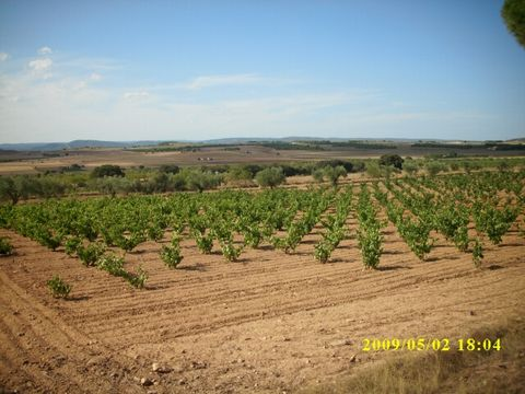 Beautiful plot planted with a combination of Vines and Almond Orchards. This plot is set outside the town of Villena and comes with water and electric. The owners also have a project and license to build a house - this is available at a cost of €6,00...