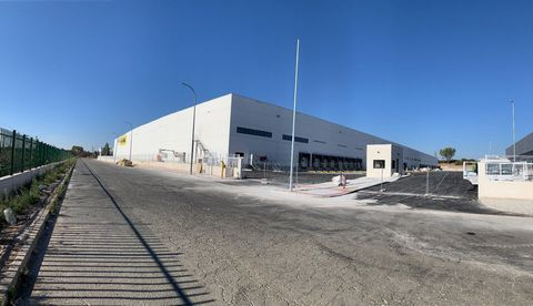 Logistic Warehouse for rent in Alovera, with 38,164 m2 and Loading Dock.