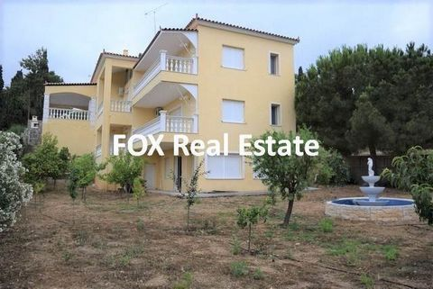 AGIOS AIMILIANOS, in the beautiful and picturesque seaside place of Agios Aimilianos, a 427sqm detached villa, year built 1998 (construction year) on a slightly sloping 1.004sqm lot facing two sides. It consists of 3 levels and features 5 bedrooms (2...