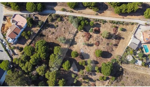 Rustic land with 6556.39m2 with excellent location, very close to shops, golf courses and quarteira beach. Land of culture of various trees. With feasibility for construction of industrial warehouses. The land is just minutes from the center of Quart...