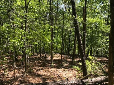 Located in Canton. Build the home of your dreams on this beautiful open and partially-wooded lot. Mature hardwoods and a rushing creek make for the most peaceful setting, offering you privacy and convenience.