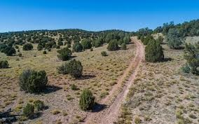 Located in Seligman. Get Your Kicks on Route 66. 1.02 Acres in Yavapai County AZ Can be Yours for Only $99 a MonthSeligman, Yavapai County, Arizona Now is your chance to own over an acre with paved road access in Bridge Canyon Country Estates for und...