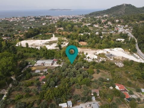 Property Code. 11128 - Agricultural FOR SALE in Thasos Limenas for €30.000. Discover the features of this 2000 sq. m. Agricultural: Ideal for a caravan. The agency Thassos Realestate located in Thassos and specializes in real estate in Thassos Island...