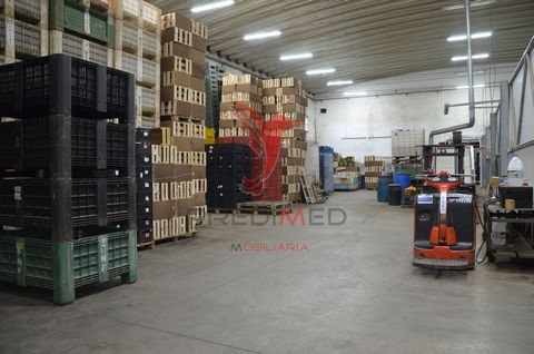 Property consisting of a warehouse with a total of 1000m2 inserted in land of 8000m2 and of which are part two refrigeration zones that total approx. 150m2. Office office to support the warehouse. Warehouse also has loading and unloading docks, patio...