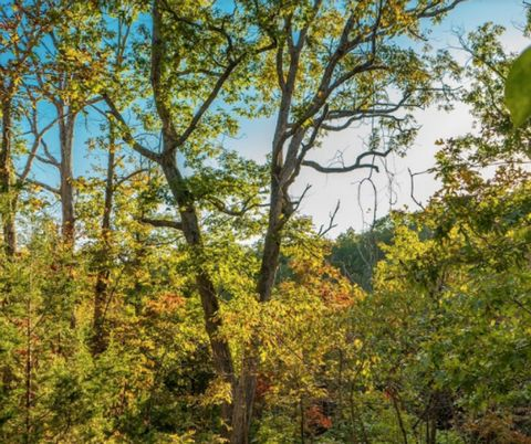 Located in Dixon. Located near Dixon and St Robert in the heart of the rolling hills of Missouri, this spectacular 20ac land for sale is available with no restrictions. You can build your dream home here, live in your RV, camper or trailer. Make it y...