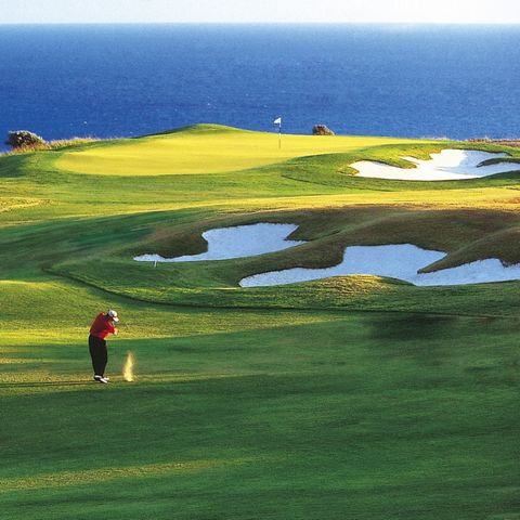 This is a unique opportunity to purchase a successful and established golf tour booking agency in Mallorca. Established in 2004, the agency partners with all nineteen 18 hole golf courses that are open to the general public. They have contacts with a...