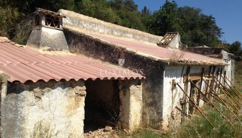 Land with ruin for construction of a villa for sale in Estoi , Faro in the Algarve in Portugal . Located in the mountains, near the hill of São Miguel, overlooking the Ria Formosa and sea . Allows the construction of a villa up to 250 m2, including ...