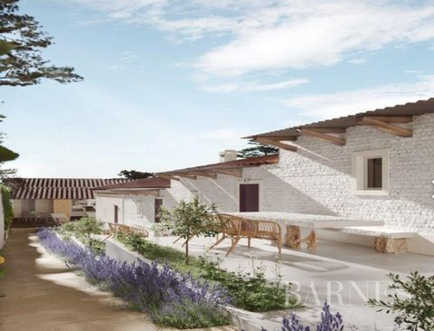 Local Guest House with 2 apartments: 1 bedroom and 2 bedrooms, 8 single rooms, common areas and a pool in Grândola center, 25 minutes from the Alentejo coast. Perfect for investors, near the beaches of Melides, Aberta Nova, and Pego - Comporta The pr...