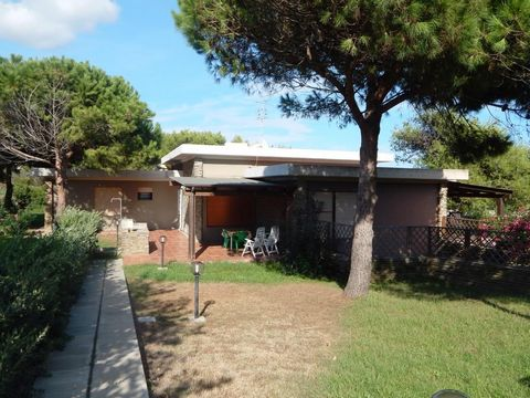 ELEGANT APARTMENT trilocale Roccaruja area, convenient to the beaches and Seagull Pelosa. Inserted in quiet residential tourism context and immersed in the green of the Mediterranean, is a large ground floor living room with kitchenette and sofa bed,...
