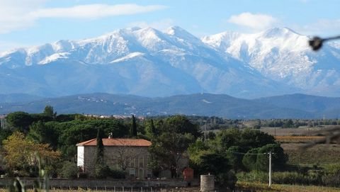 At the foothills of the Pyrenees – Cru Les Aspres This impressive 35 ha property sits at the heart of the Côtesdu Roussillon, not far from the Spanish border. The domain offers a peaceful setting near to a Catalonian village to the south of Perpignan...