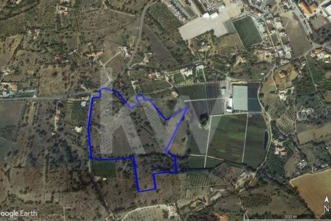 Agricultural land with 4880 M2 of arable culture, olive and almond trees with brook, located on the site of Fornalhas, Moncarapacho. This rustic property has the potential to be included in an agricultural project with an area of several hectares.