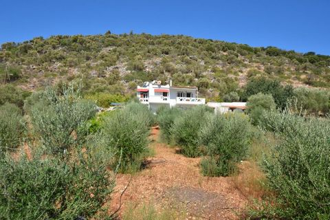 Located in Agios Nikolaos. Set on a hillside, in the beautiful valley of Lakonia, Agios Nikolaos, Lasithi, Crete this is a Cretan farmhouse of 127m2 on private fenced and gated land of 2000m2. The recently partly-renovated house stands on two floors....