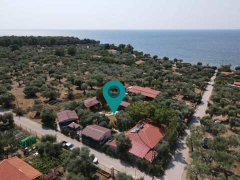 Property Code: 11112 - Business FOR SALE in Thasos Skala Kallirachis for €230.000. This 95 sq. m. Business is built on the Ground floor and features The property also enjoys Heating system: Air conditioner, View of the Mountain, parking, garden, A/C,...