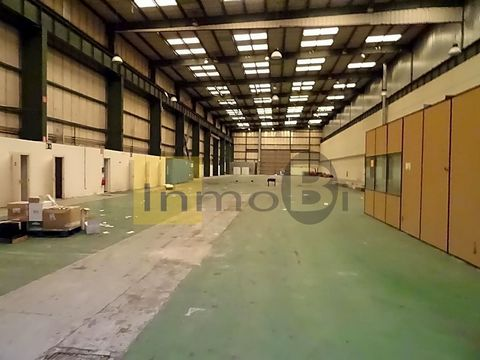 This industrial is at Igeltzera Kalea, 48610, Urduliz, Bizkaia. It is a industrial, built in 1975, that has 2300 m2 of which 2300 m2 are useful and has 3 bathrooms.