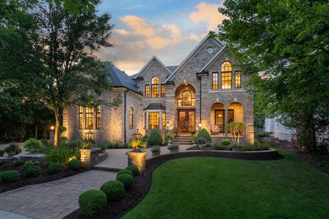 New to the market is a one owner Scott Barczi Custom home at 917 Jackson Ave, in the heart of downtown Naperville! This property is at the end of the highly sought after Jackson Ave, and also adjoins the park district property. It's location has been...