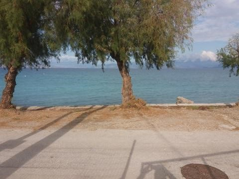 For sale unfinished,  seafront house of 65 sq.m. on the plot of 800 sq.m. at Kamari, Xylokastro, Peloponnese. It is separated from the beach by a small rural road. Building permit for this plot is 188 sq.m. Price 350.000 euros, bargaining possible.