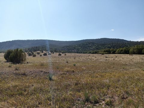 Located in Rye. This lot is located NW of Colorado City in picturesque Green Horn Valley just east of the Wet Mountains. Colorado City is situated a the far western edge of the Great Plains as they transition into the Rocky Mountains. The city of Pue...